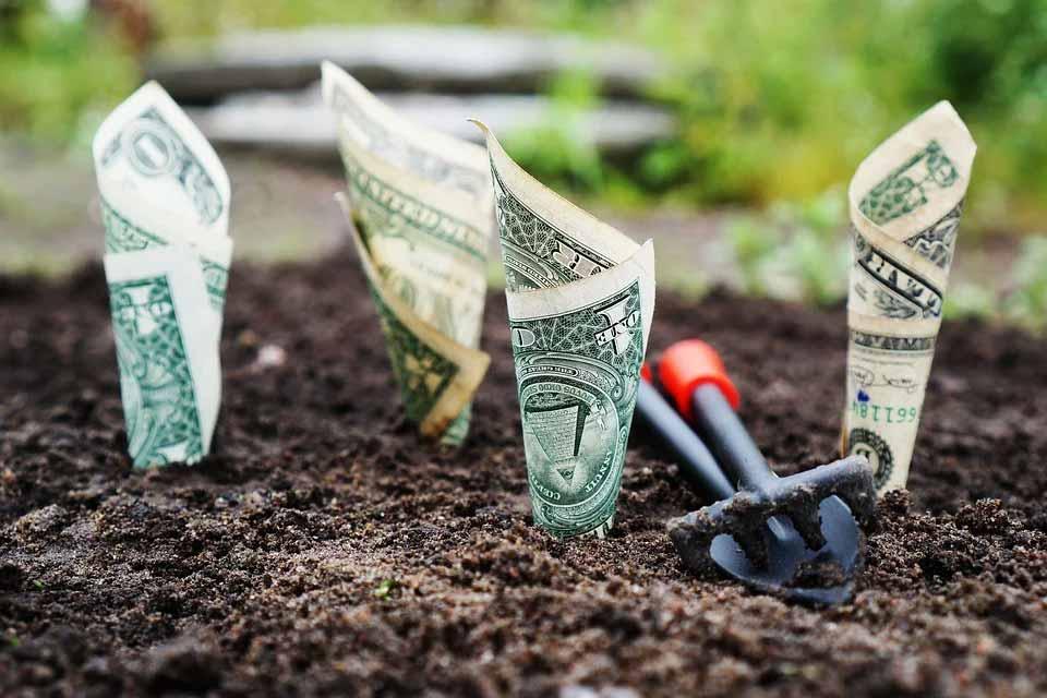 Virksomheder i alle brancher kan vokse med franchising